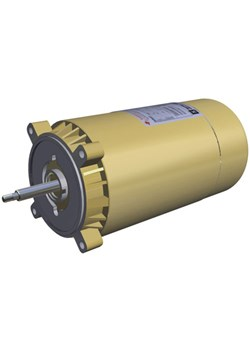 SPX1607Z1BECAG-Hayward SPX1607Z1BECAG 60-Hz/1-Ph Motor Replacement for Hayward Superpump, 3/4-HP