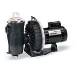 Jandy MHPM MaxHP Series Pump