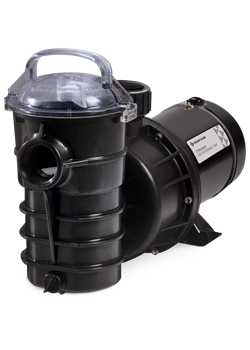PF340204-Pentair Stainless Steel Black Dynamo Two-Speed 115-Volt Pool Pump without Cord.