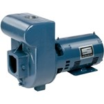 Sta-Rite D Series Pumps