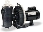 Pentair WaterFall Pumps